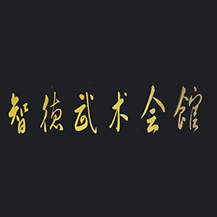 智德武术会馆logo