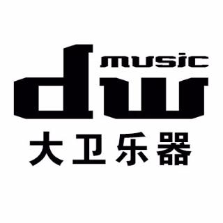 大卫乐器logo